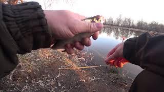 Первый фидер в этом году Рыбалка на озере Ловля подлещика и плотвы весной