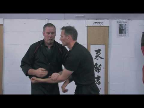 Wing Chun Kung Fu Chi Sau Cheap Shots