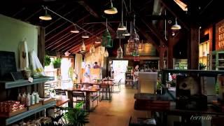Terrain at Styer's | Glen Mills, PA