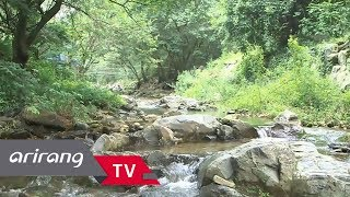 [Viewfinder] Jangsimni stream