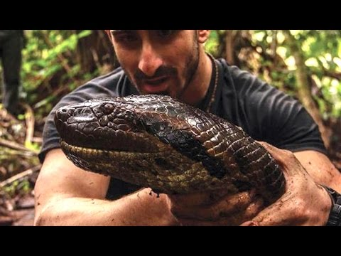Man Gets EATEN ALIVE By Anaconda?   What's Trending Now
