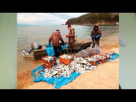 до какого числа закрыта рыбалка с лодки