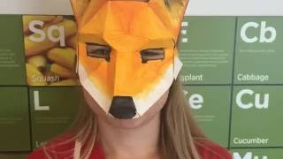 Making a Low-Poly Papercraft Mask