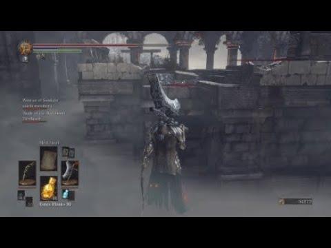 Dark Souls III THOSE kind of invaders (6)
