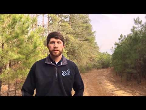 75 acres Jefferson County, GA - Online Auciton Ends Feb. 1