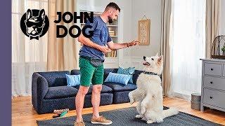 "Sztuczka ""poproś"" – TRENING – John Dog"