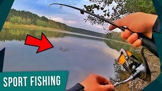 Щуки лесного озера и Судаки на дикой речке Рыбалка на спинниг осенью