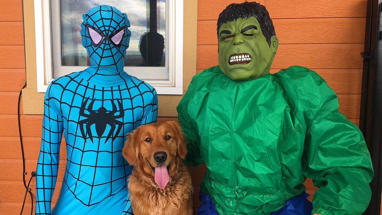 Blue Spiderman SAVES Earl From Hulk!