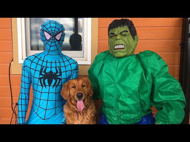 Blue Spiderman SAVES Earl From Hulk!