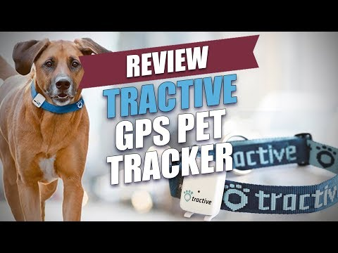 Tractive GPS Pet Tracker Review (2017)