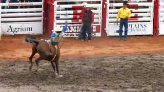 Rodeo at Calgary Stampede 2013 - July 6th [HD]