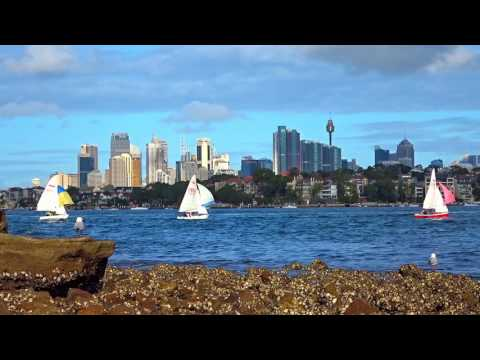 Sydney Harbour - HD - 30 minutes - Day Dreaming