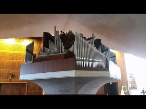 St. Mary's Cathedral Pipe Organ Concert San Francisco