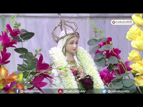 English Mass @St  Joseph's Cathedral,Gunfoundry, Hyderabad, TS, INDIA  24 08 17