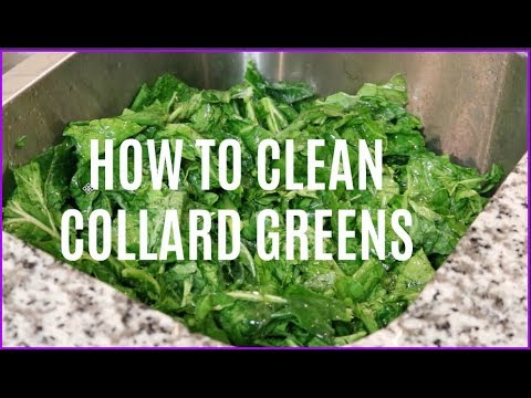 HOW TO CLEAN COLLARD GREENS | SIMPLE METHOD| CALORRITV