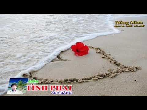 Karaoke TÌNH PHAI (HOMIA) - QUANG LẬP