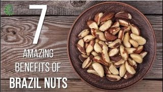 7 Amazing Benefits Of Brazil Nuts | Organic Facts