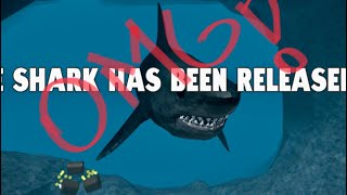 Proprietà Roblox . SharkBite 😮 OMG!