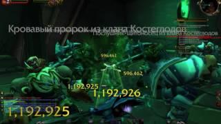 Охотник на Демонов в Черном Храме (WoW Legion)