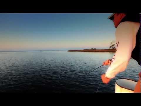 Panama City Beach Fly Fishing