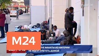 Футбольные фанаты из Нигерии не смогли улететь домой - Москва 24