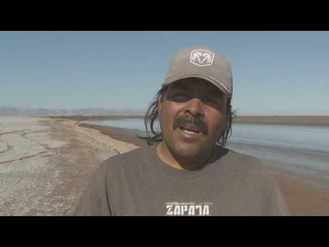 Colorado, les voleurs de fleuve - Thalassa documentaire