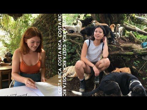 COSTA RICA | Hike with 900+ Dogs, San Jose, Puerto Viejo | travel vlog