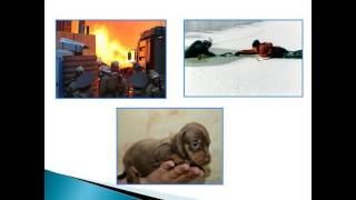 презентация на тему долг и совесть 9 класс