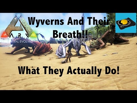 Ark Insight - Wyverns And Their Breath!! What They Actually Do!