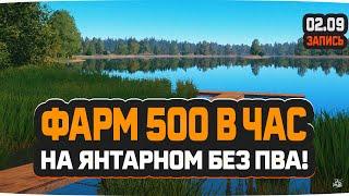 Фарм 500 в час без ПВА на Янтарном озере Русская Рыбалка 4