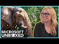 Microsoft Unboxed: AI for Earth (Ep. 6)