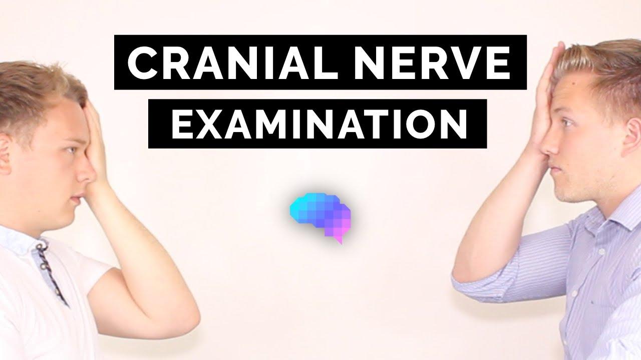 Neurological Examination OSCE guides   Geeky Medics