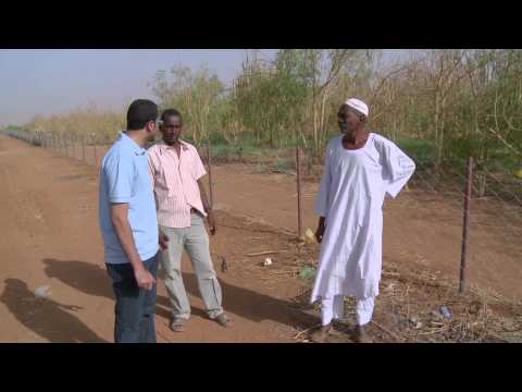 Bank of Khartoum: Profit Sharing for Farmers
