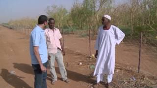 Bank of Khartoum: Profit Sharing for Farmers