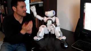 NAO Robot Akinator Game - The robot genius