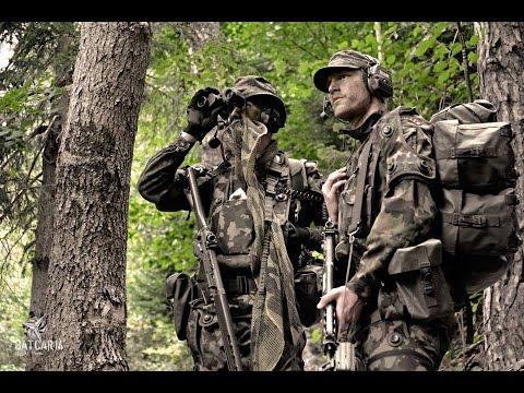 Armée suisse - Explorateurs bataillon de carabiniers 14