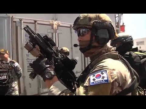 Visit, Board, Search and Seizure (VBSS) Exercise (HD)