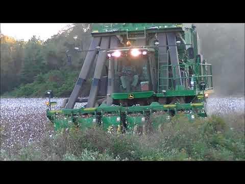 FOUR CP690's PICKING COTTON. PGC FARMS 2017 COTTON HARVEST Part 3