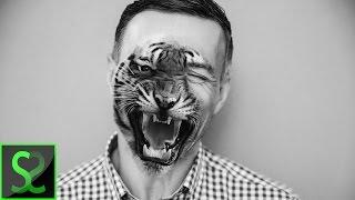 Half man   Half animal face   Advanced   Photoshop tutorial screenshot 4