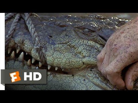 The Crocodile Hunter: Collision Course (9/10) Movie CLIP - Smart Croc (2002) HD