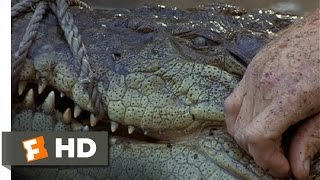 The Crocodile Hunter: Collision Course (9/10) Movie CLIP - Smart Croc (2002) HD