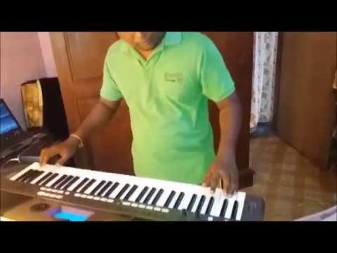 Mage Namali badi adare ...Instrumental Cover by Pavithra Kumara