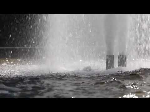 Public Fountain 720p & Free Video & NO COPYRIGHT VİDEO &
