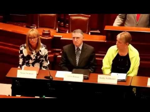 Illinois House of Representatives Hearing on Child Care