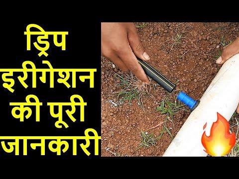 Drip Irrigation System in Hindi | टपक सिंचाई , ठिबक सिंचन | Drip Uses,Types, Size, Cost, Subsidy