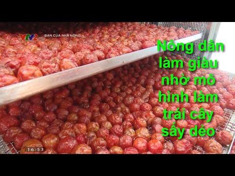 Nông dân làm giàu nhờ mô hình làm trái cây sấy dẻo