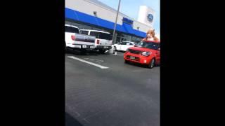 Bulldog Kia Hamster Visits Ford Dealership
