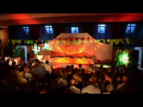 THE LION KING - Summer Show 2017 | Usk Church in Wales Primary School