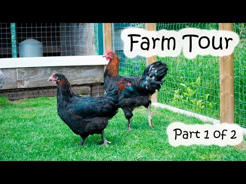 Farm Tour Part 1 of 2.