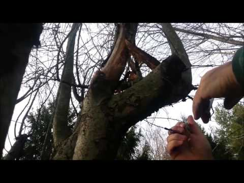 Wire Survival Saw - Do They Work?  Latvia Bushcraft Kit Addition